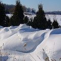 Waves Of Snow by Peggy King