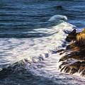 Waves Rocks And Birds by Jon Burch Photography