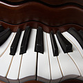 Wavey Piano Keys by Garry Gay