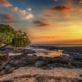 Wawaloli Beach Sunset by Susan Rissi Tregoning