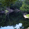 Way Down Upon The Suwannee River Fisheye by Warren Thompson