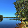 Way Down Upon The Swuanee River In Hdr by Frank Feliciano