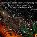 We  All Not Only  Could Know Everything... by Heather S Huston