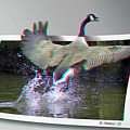 We Have Liftoff - Use Red-cyan 3d Glasses by Brian Wallace