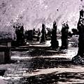 We Will Be Trees by Helga Novelli