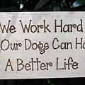 We Work Hard by Juergen Roth