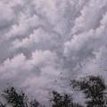 Weather Alert by Tom Shropshire