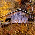 Weathered Barn 1 by Sam Davis Johnson