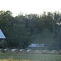 Weathered Barn And Hay Bales  by Scott D Van Osdol
