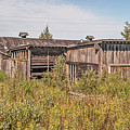 Weathered Barn And More by Sue Smith