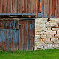 Weathered Barn Door by Perry Webster