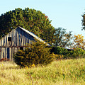 Weathered Barn In Fall by Cricket Hackmann