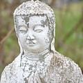 Weathered Buddha Statue by Marla McPherson
