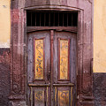 Weathered Door by Carol Leigh