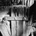Weathered Fence In Black And White by Warren Thompson