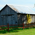 Weathered Garage N Fall by Stephen Path