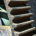 Weathered Metal Cogs by Carol Groenen