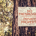 Weathered No Trespassing Sign On Tree by Bryan Mullennix