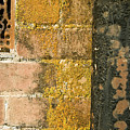 Weathered Wall by Norman Andrus