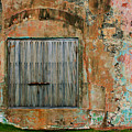 Weathered Wall  by Perry Webster