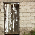 Weathered White Wood Door by Robert Hamm