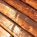 Weathered Wood Log Cabin by Carol Groenen