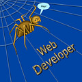 Web Developer by Vincent Autenrieb