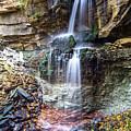 Webwood Falls by Richard Kitchen