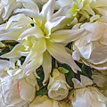 Wedding Day Bouquet by Barbara Zahno
