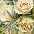 Wedding Flowers by Wim Lanclus