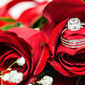 Wedding Rings by Tysha Rodriguez