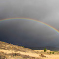 Wednesday Morning Rainbow by Donna Kennedy
