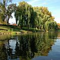 Weepin Willows Frankenmuth Cass River by LeeAnn McLaneGoetz McLaneGoetzStudioLLCcom