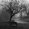 Weeping by Ayesha  Lakes