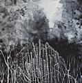 Weeping Tree Of Love by Stefan Duncan