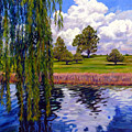 Weeping Willow - Brush Colorado by John Lautermilch