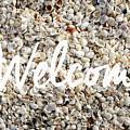 Welcome Seashell Background by Edward Fielding