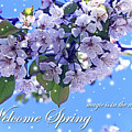 Welcome Spring by Malanda Warner