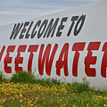 Welcome To Sweetwater  by Soni Macy