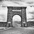 Welcome To Yellowstone Too by Rachel Barrett