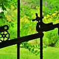 Welded Garden Gate by Wendy Rickwalt