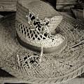 Well Worn Sepia by D Hackett