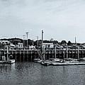 Wellfleet Harbor by Thomas Langton
