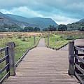 Welsh Landscape by Monika Tymanowska