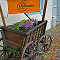 Weltladen Cart by Jost Houk