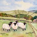Wensleydale Sheep by Renee Chastant