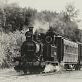 West Coast Railway by Nicholas Blackwell