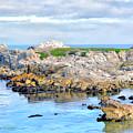 West Coast Seascape 3 by Barbara Snyder