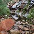 West Fork Trail River And Rock Horizontal by Heather Kirk