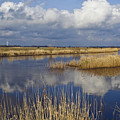 West Jutland - The Flat Country by Wedigo Ferchland